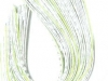white-snake-chartreuse